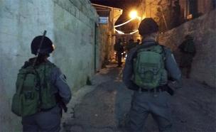 לוחמים במערת המכפלה (צילום: דוברות המשטרה, חדשות)