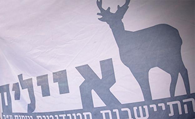 """עבודות שירות לבכירים ב""""איילים"""" (צילום: Yonatan Sindel/Flash90, חדשות)"""