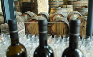 חביות יין ביקב ברקן (צילום: מנדי הכטמן פלאש 90)