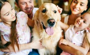 משפחה עם כלב (צילום: kateafter | Shutterstock.com )