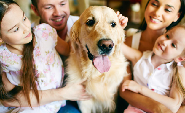משפחה עם כלב (צילום: kateafter   Shutterstock.com )
