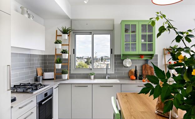 מטבחים צבעוניים, 2 עיצוב אלכנסדרה דיז (צילום: ארתור דריגנט)