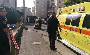 זירת הרצח בחיפה (צילום: דוברות המשטרה, חדשות)