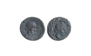 מבט מקרוב על המטבע של קליאופטרה (צילום: חנן שפיר, חדשות)
