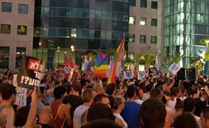 ההפגנה נגד חוק הפונדקאות בתל אביב (צילום: ביתי, צילום ביתי)