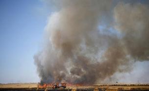 שריפה מעפיפון תבערה (ארכיון) (צילום: אלי כהן דובר כבאות מחוז דרום, חדשות)