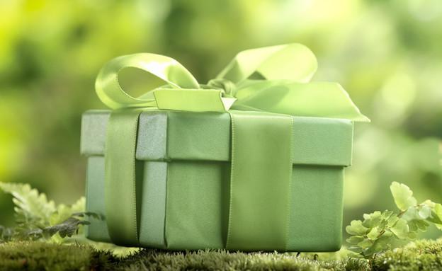 מתנה ירוקה (צילום: By Dafna A.meron, shutterstock)