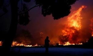 שרפה, יער, אתונה, יוון (צילום: רויטרס, חדשות)