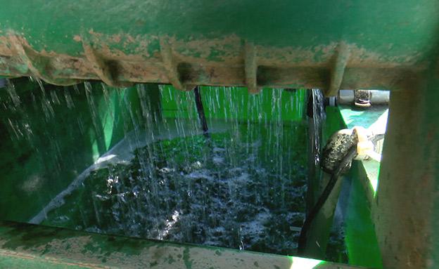 מערכת טיהור המים האפורים (צילום: החדשות)