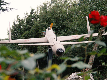 כלי הטיס שבפארק (צילום: חדשות)