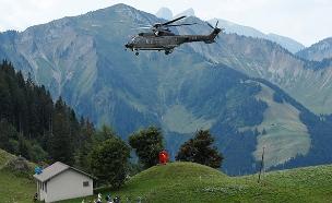 צבא שווייץ מתגייס להציל את הפרות (צילום: רויטרס, חדשות)