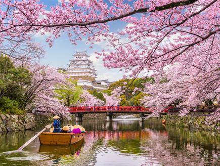 לימודי מזרח אסיה (צילום: kateafter | Shutterstock.com )
