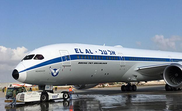 המטוס החדש (צילום: חדשות)