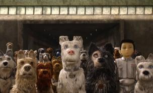 אי הכלבים, ביקורת סרט (צילום: יחסי ציבור)