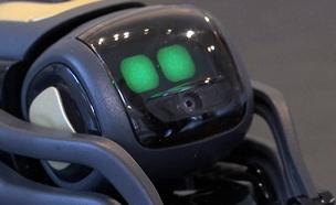 הרובוטים של העתיד - יותר חברותיים. צפו (צילום: AP, חדשות)