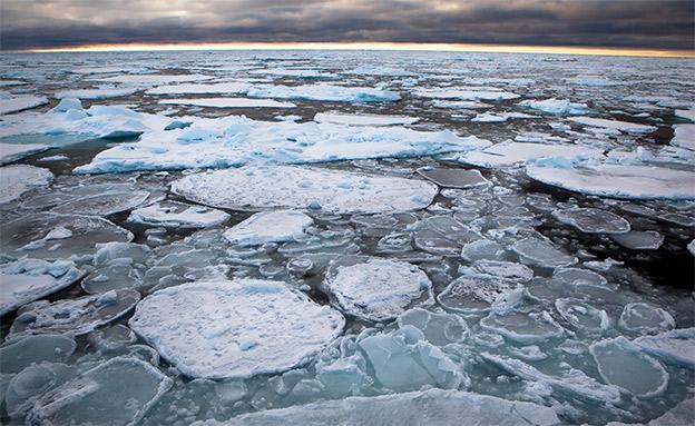 """משטחי הקרח המתרחקים. """"מפחיד"""" (צילום: Nick Cobbing/Greenpeace, חדשות)"""