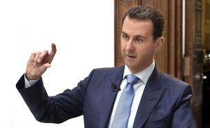 איך הגיבה סוריה להצעה? (צילום: חדשות)