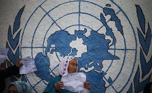 הקרב לפתרון בעיית הפליטים החל (צילום: רויטרס, חדשות)