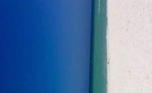 דלת או ים? (צילום: טוויטר\@rebeccareilly__)