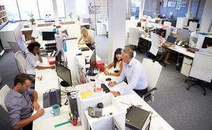 עובדים במשרד (אילוסטרציה: By Dafna A.meron, shutterstock)