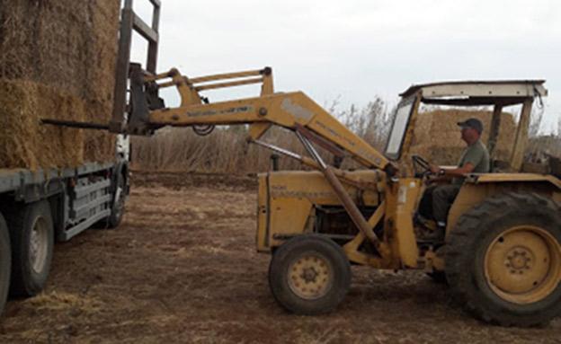"""""""חקלאות היא ערך בשבילנו"""" (צילום: השומר החדש, חדשות)"""