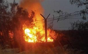 השריפה התחדשה (צילום: רשות הטבע והגנים, חדשות)