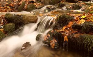 נהר זורם (צילום: Rushvol, shutterstock)