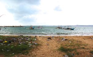 חוף ים מלוכלך (צילום: Shutterstock - By Chris T photography)