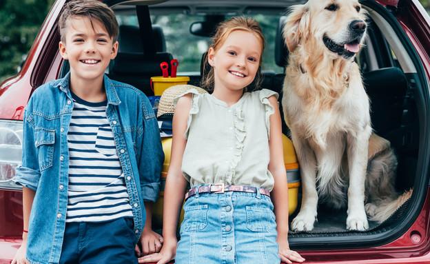 ילדים וכלב ברכב (צילום:  LightField Studios, Shutterstock)
