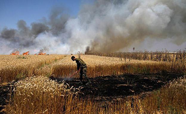 שריפה שנגרמה בעוטף עזה מעפיפון תבערה (צילום: אלי כהן דובר כבאות מחוז דרום, חדשות)