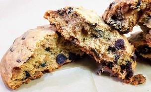 עוגיות שוקולד צ'יפס ניו יורק, שוגר דדיז (צילום: גיל פינקלשטיין, שוגר דדיז)