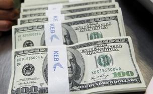 אלף דולרים שהלכו לפח (צילום: רויטרס, חדשות)