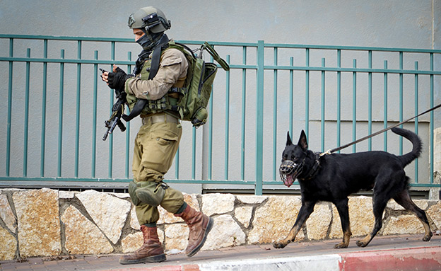 פיגוע ירי בשומרון (צילום: פלאש 90, חדשות)