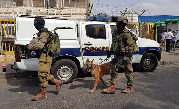 חיפושים אחר המחבל בפיגוע הירי בשומרון (צילום: חדשות)