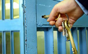 שער של תא בכלא (צילום: MikeDotta, ShutterStock)