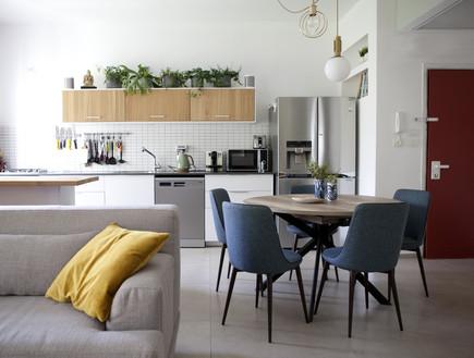 דירה בתל אביב, עיצוב שרון ברקת - 7 (צילום: שרון ברקת)