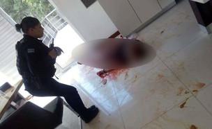 תקיפה במקסיקו (צילום: Ixtapa Zihuatanejo Noticias, KateRiep_Godbye)