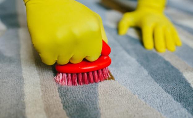 ניקוי שטיח (צילום: Maria Mikhailenko, Shutterstock)