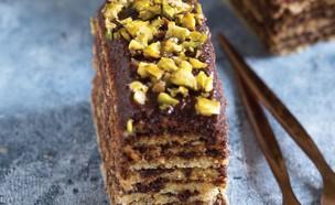 עוגת שכבות עם קרם פיסטוק-שוקולד (צילום: שושי סירקיס, מתוק ובריא, הוצאת דני ספרים)