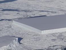התגלית המוזרה באנטארקטיקה מחרפנת את כולם
