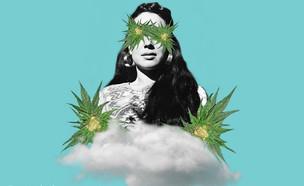 טלגראס למגזין (צילום: greengardensf)