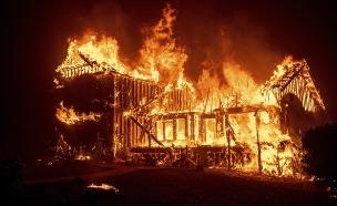 """""""תברחו, כל העיר עולה באש"""" (צילום: חדשות)"""