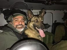 הכלב שהפך לאימת המחבלים וארגוני הפשיעה
