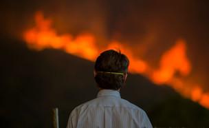 שריפה בקליפורניה (צילום:  Getty Images David McNew)