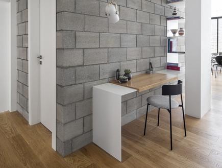 דירה בתל אביב, עיצוב בריק קווה אדריכלים, צילום איתי בנית (12) (צילום: איתי בנית)