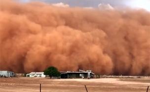 סופת אבק אימתנית באוסטרליה (צילום: כלי תקשורת באוסטרליה, חדשות)
