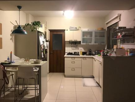 דירה ברמת השרון, עיצוב מיכל וולפסון, לפני שיפוץ, מטבח (צילום: מיכל וולפסון)