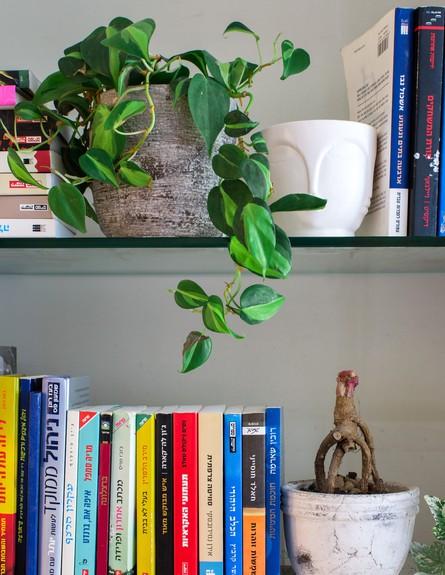 דירה ברמת השרון, ג, עיצוב מיכל וולפסון, סלון, צילום דנה סטמפלר עשה (צילום: דנה סטמפלר עשהאל)