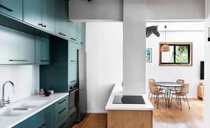 דירה בתל אביב, עיצוב דנה ברוזה - 11 (צילום: איתי בנית)