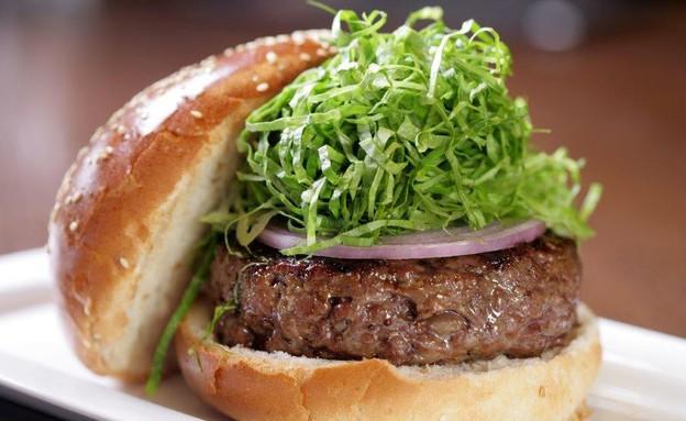 מסעדת המבורג המבורגר  (צילום: שחר טל , יחסי ציבור)